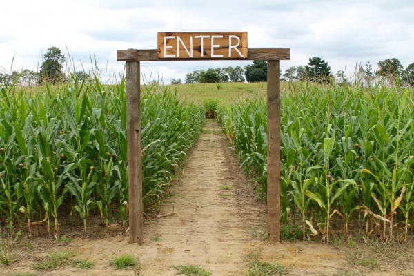 Corn Mazes to Visit in Northern Georgia